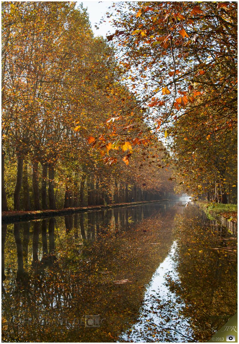 Automne sur le canal