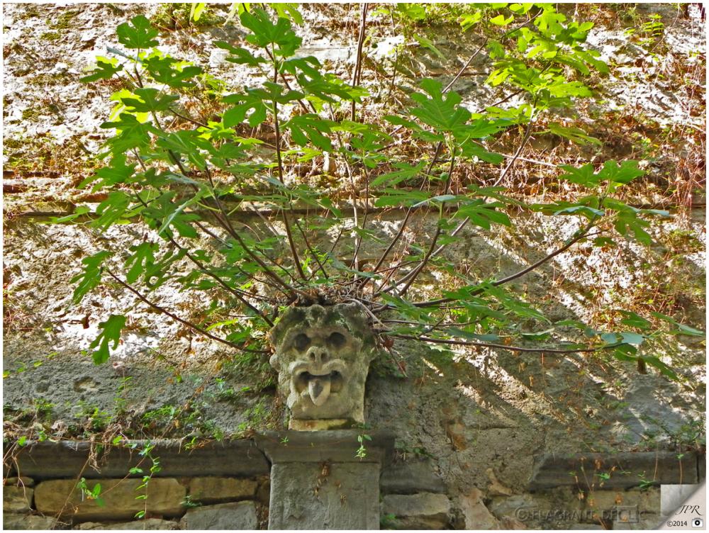 Un arbre dans la tête - A tree in the head