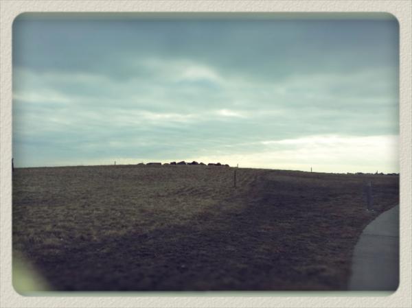 prairie heng