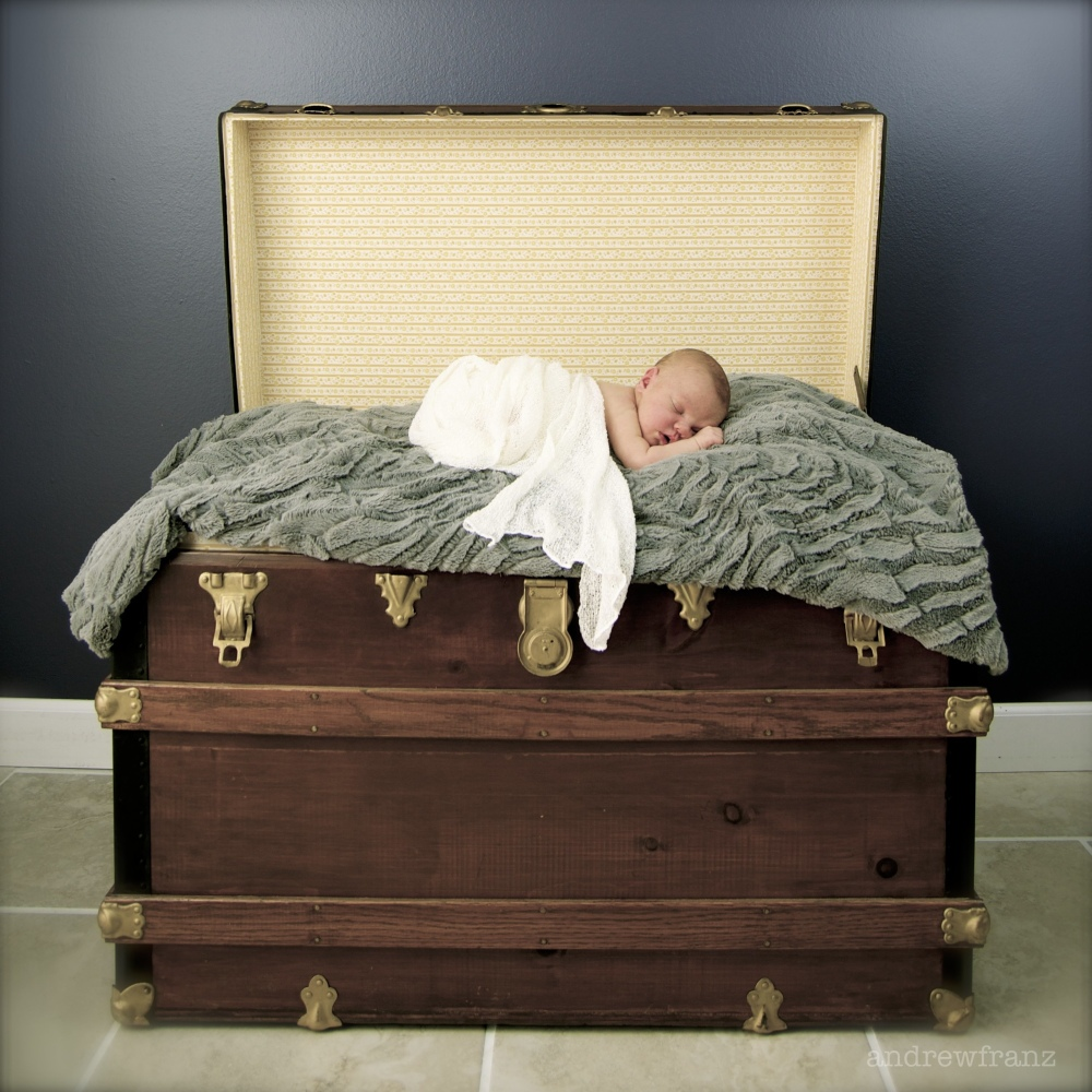 Newborn boy in antique trunk