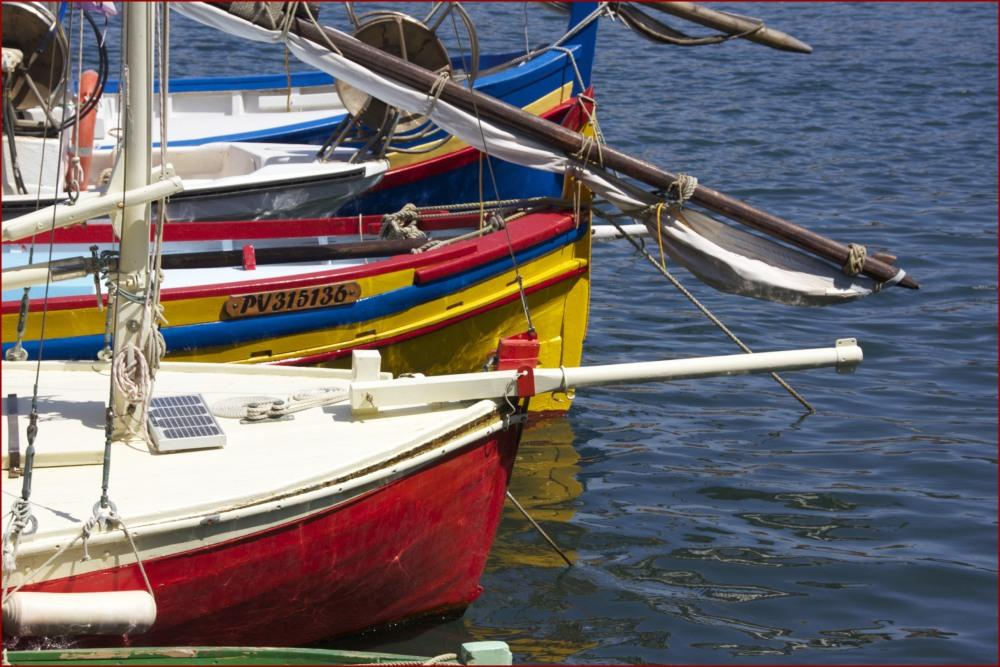 collioure barques