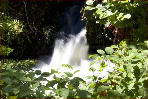 L'eau de Pont Aven