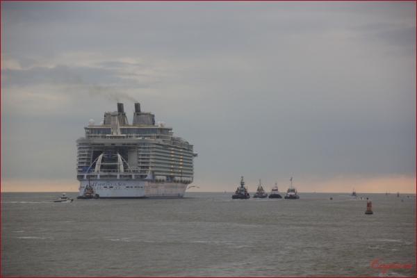 Harmony of the Seas fin