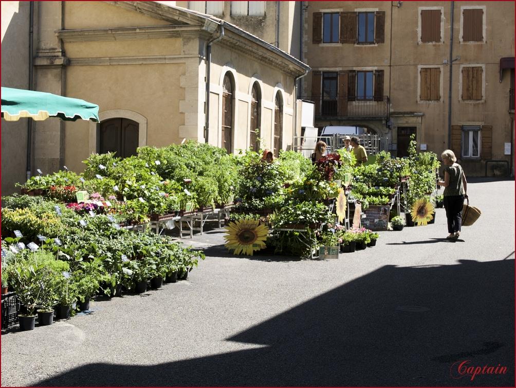 Marché aux plantes et fleurs