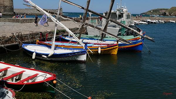 Les barques occitanes