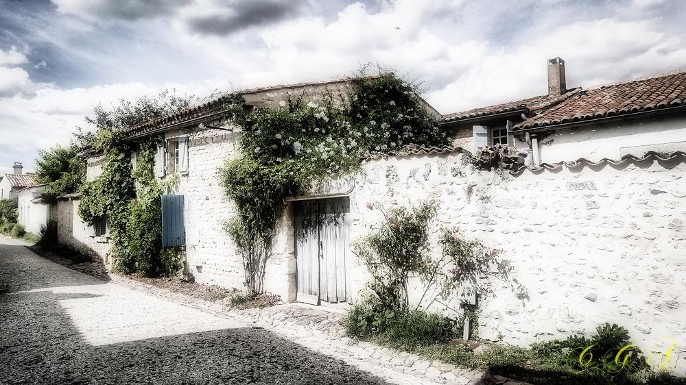 Rue des jasmins
