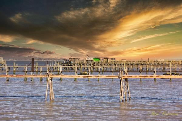 Les passerelles de l'estuaire