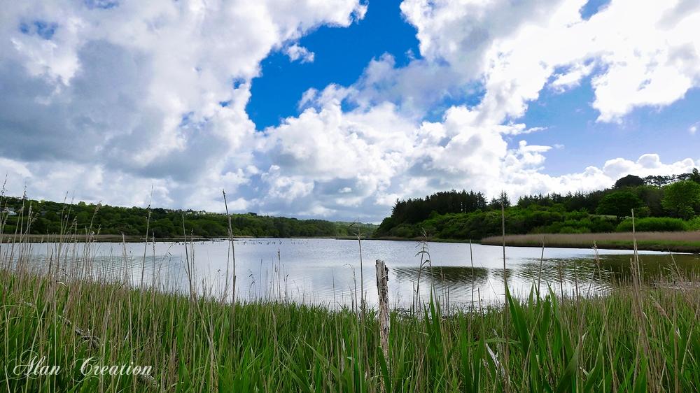 Marais breton protégé