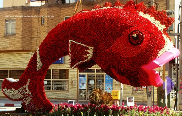 fish/kermansha city