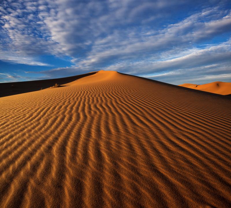 Namibia desert #4
