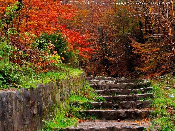 Stairs To The Red , From Green