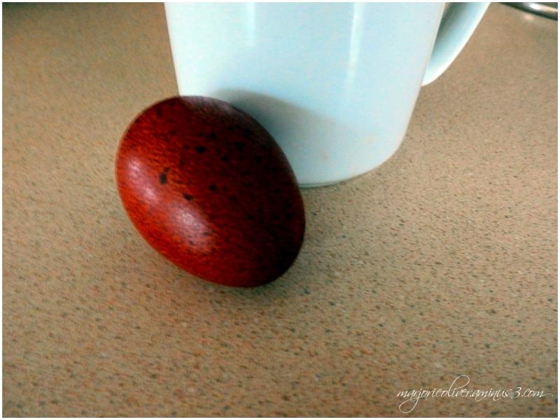 French Copper Maran Egg
