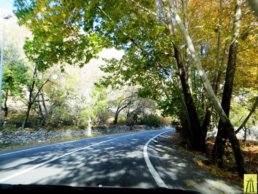 On the Road of Fall