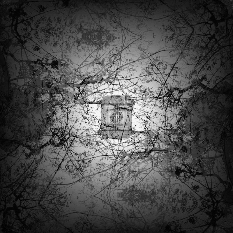 dabnotu,monochrome,barcelona,digital,photography