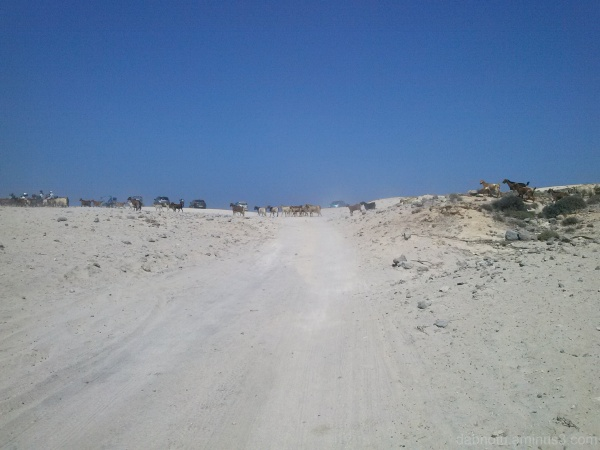 Traffic jam along Kata Beach (Kos) in summer/2014.