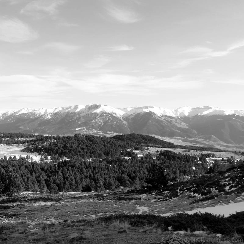 Black and white Southern France landscape, edit.