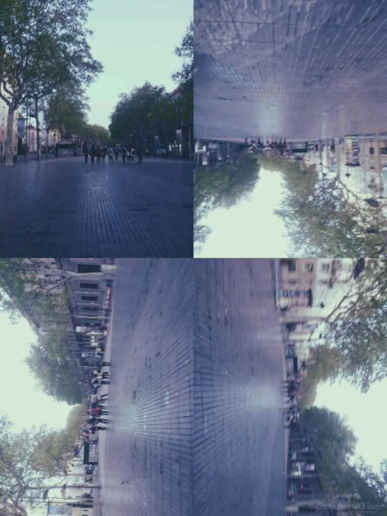 Tetraptych, smartphone + Retro Camera Effects app!