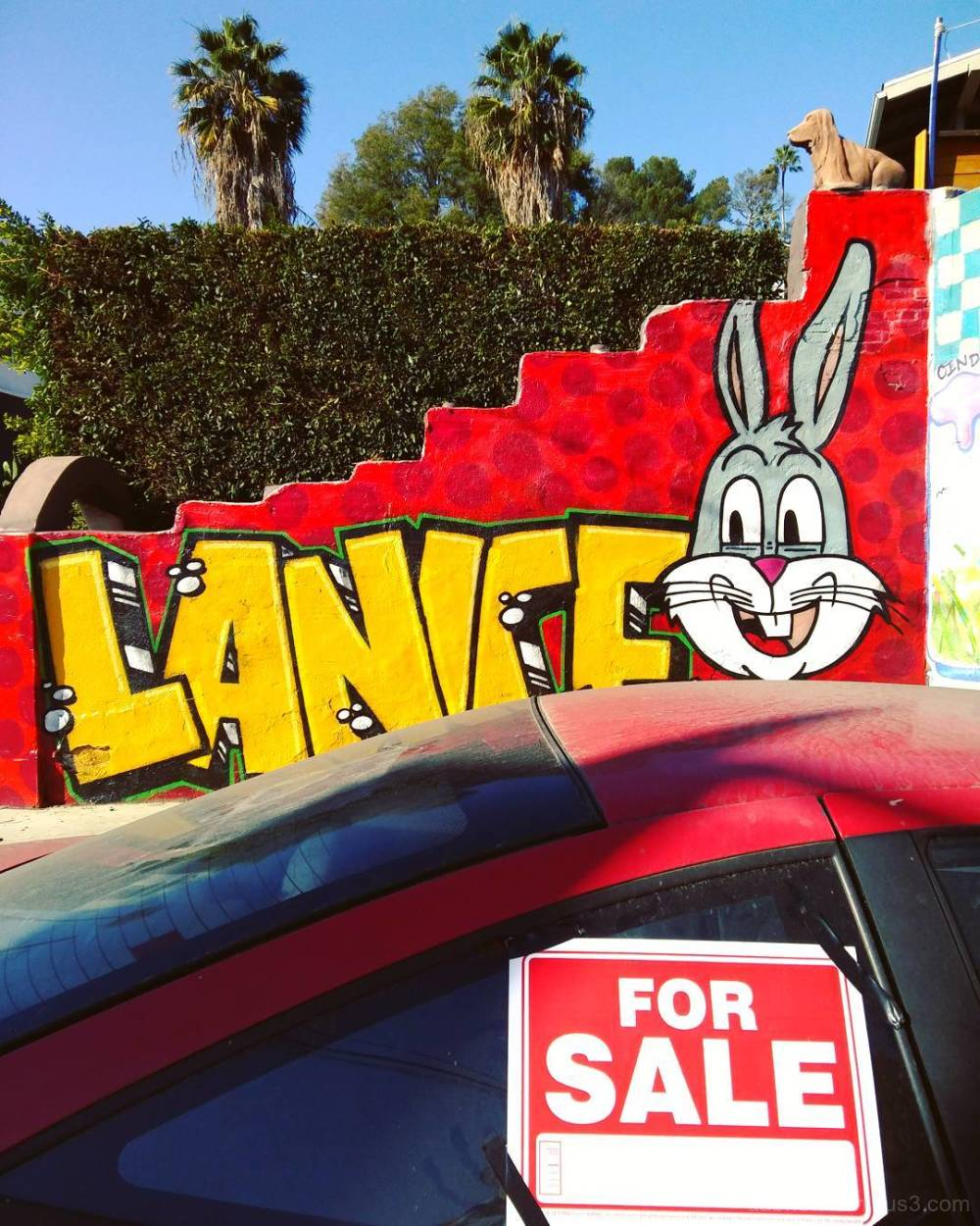 Edited smart/street photography in sunny Californi