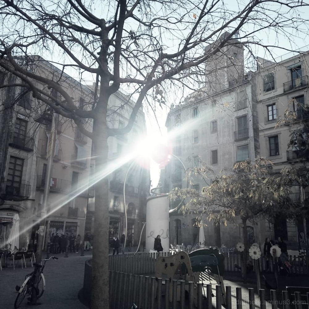 #PlaçaGeorgeOrwell #BarriGòtic #CiutatVella
