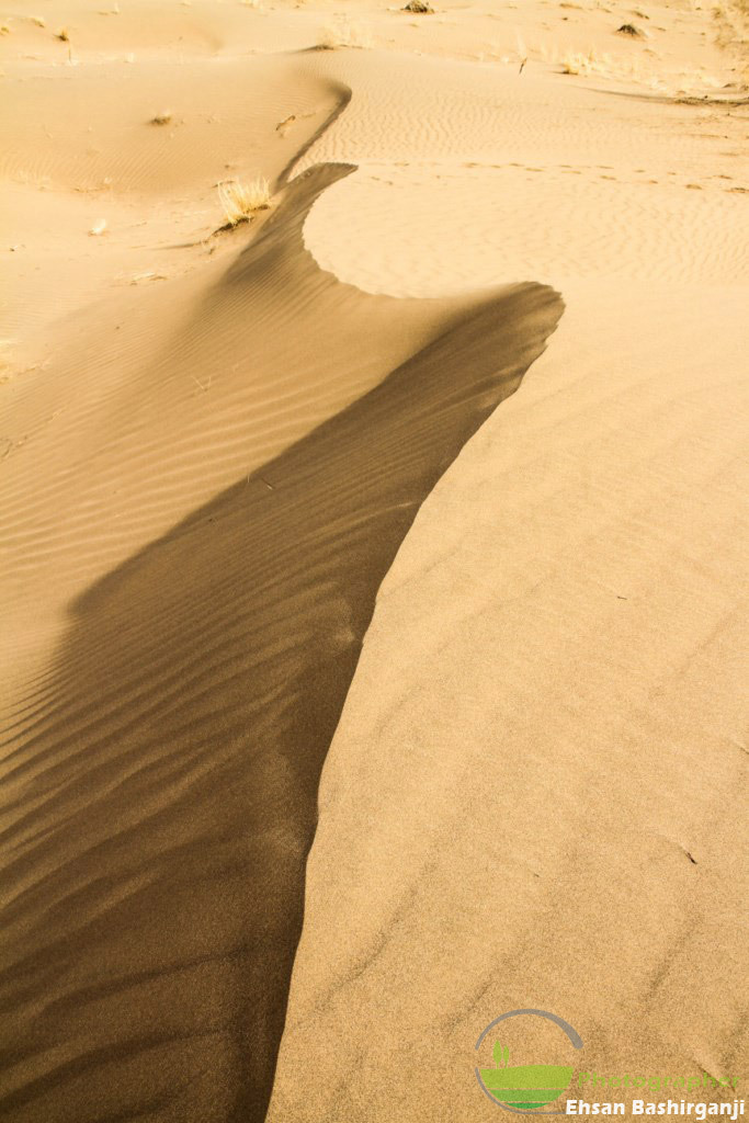 Curvature of the Desert