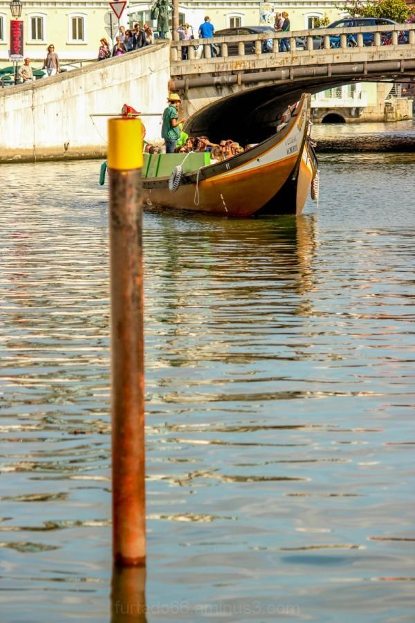 A navegar pela Ria