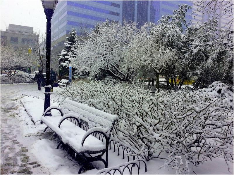 NJ snow times....