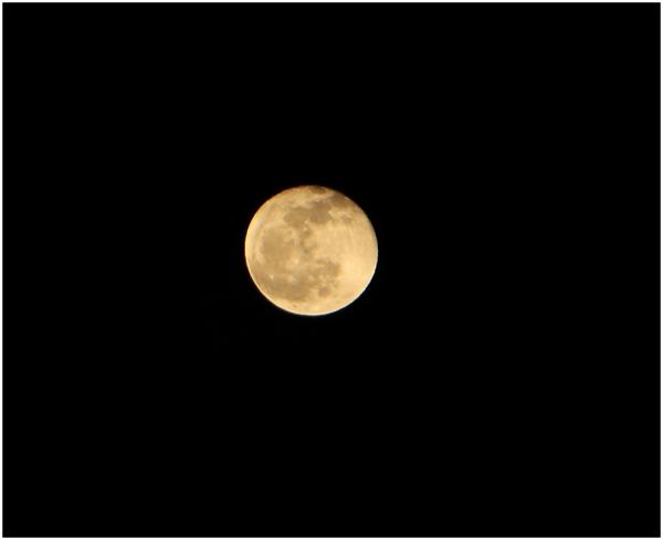 Beautiful Moon New Jersey