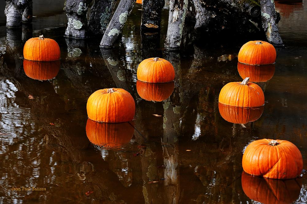 Hallowen…Pour nous aussi !