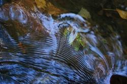 Au fil de l'eau (2)
