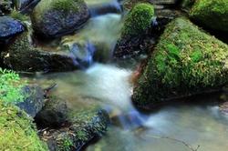 Au fil de l'eau ~~