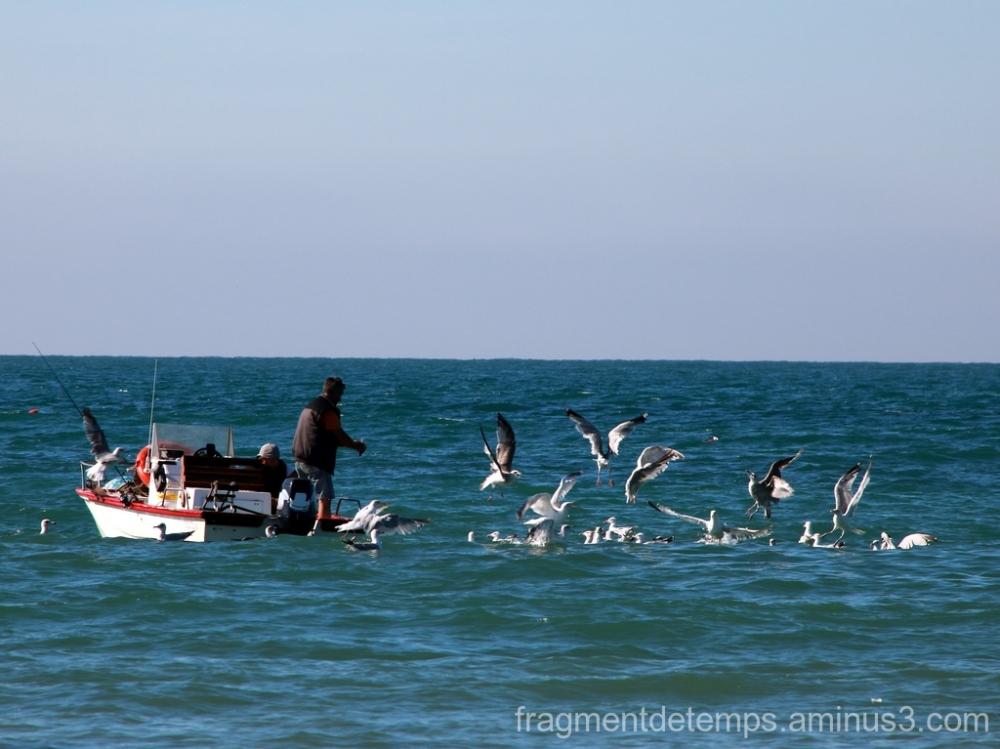 Scène de pêche