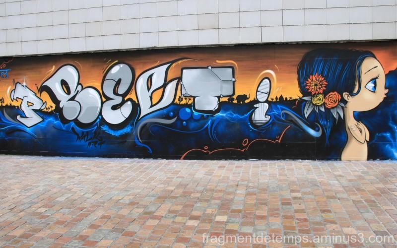Le MUR Cherbourg by WalkArt