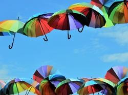 Parapluies à Cherbourg