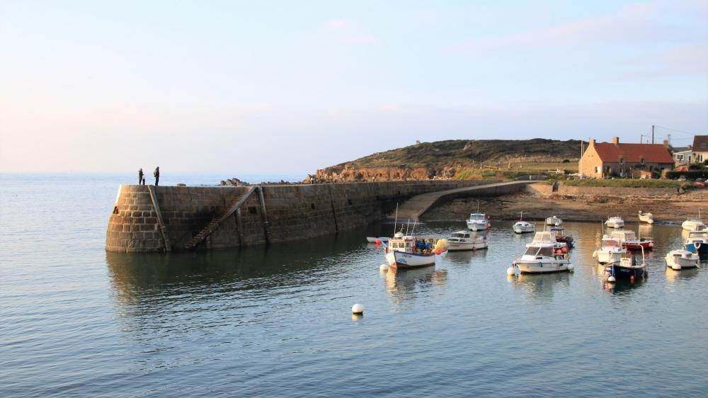 Le port du cap Lévi
