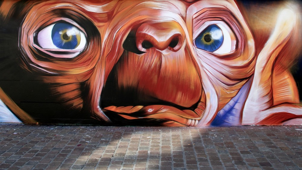 Le MUR Cherbourg #13 by Blesea
