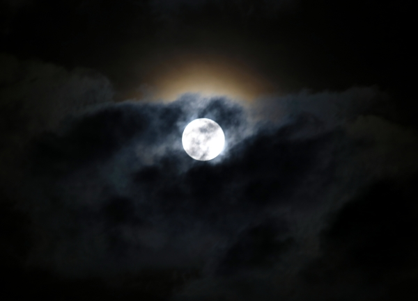 Moon #19022019