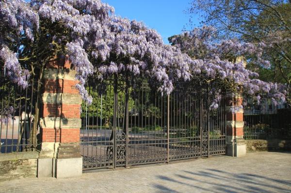 Entrée du jardin public