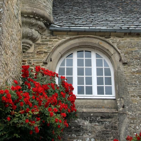 Les roses du château .