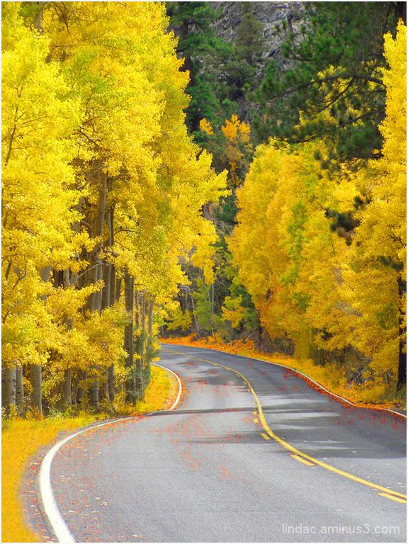 Golden Road June Lake Loop
