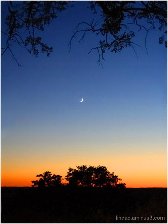 Shoot the Moon in El Dorado Hills