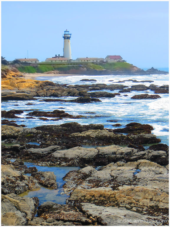 Pigeon Point Lighthouse 3
