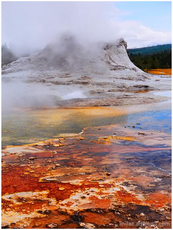 Geyers of Yellowstone #7 Castle Geyer