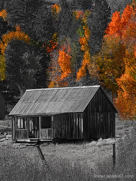 Fall Ranch, Hope Valley B&WColor