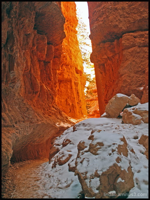 Navajo Trail, Wall Street 2, Bryce Canyon
