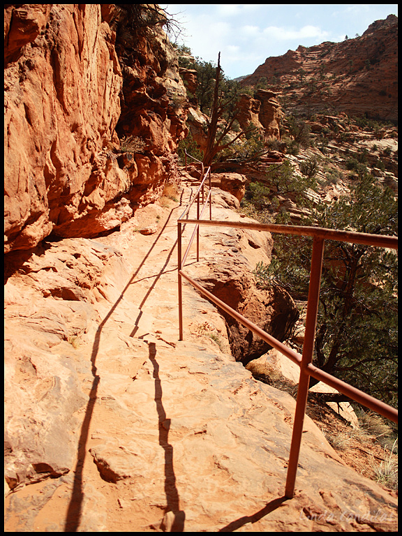 Canyon View Trail 3, Zion National Park