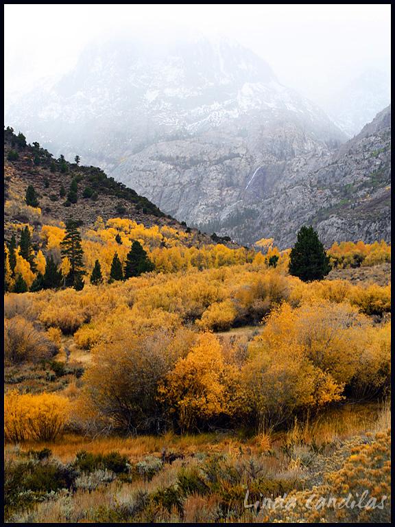 June Lake Loop, Colors of Fall