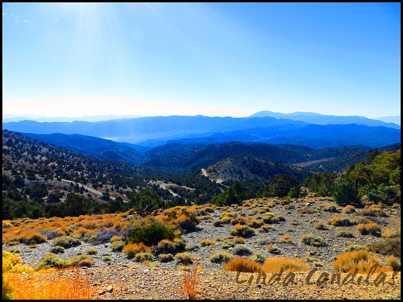 Road to Bristlecone Pines
