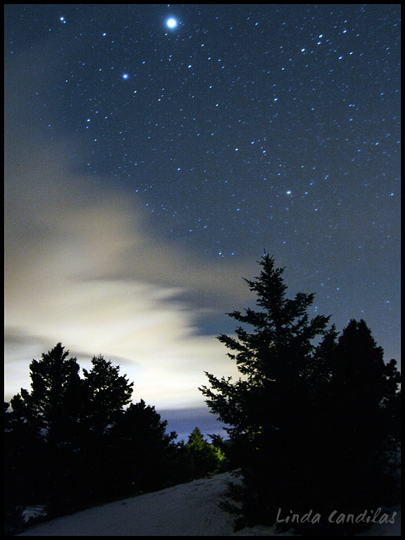 Montana NorthStar