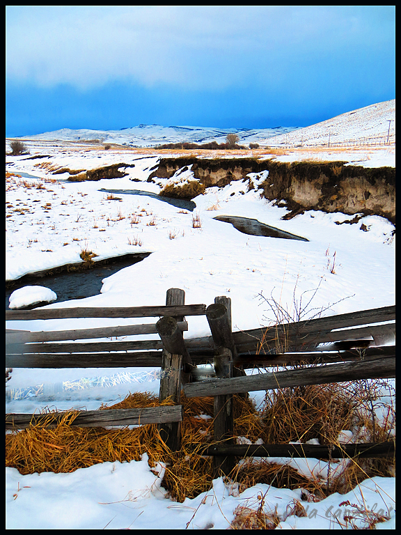 Montana Stream and Fence