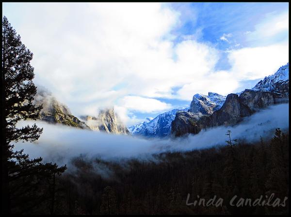 Fog Striching Across Yosemite Valley Floor